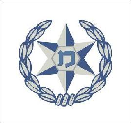 לוגו משטרה